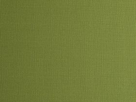 Alexandria Linen Apple Green